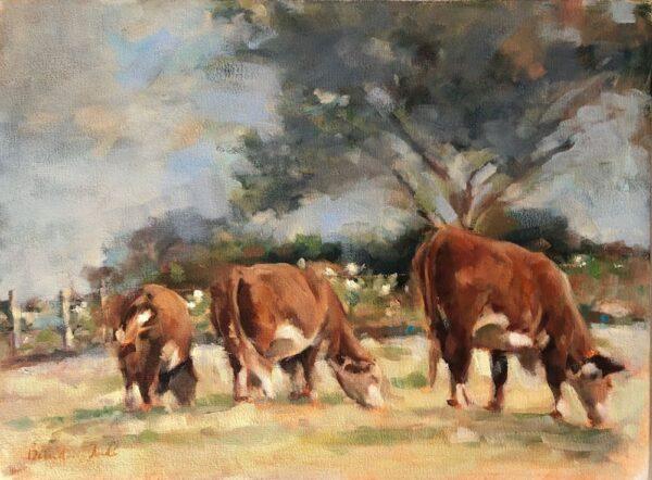 Farm Afternoon