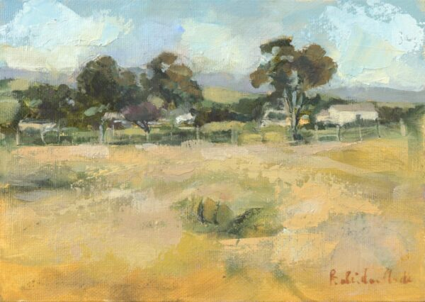Across the Field, Koringberg
