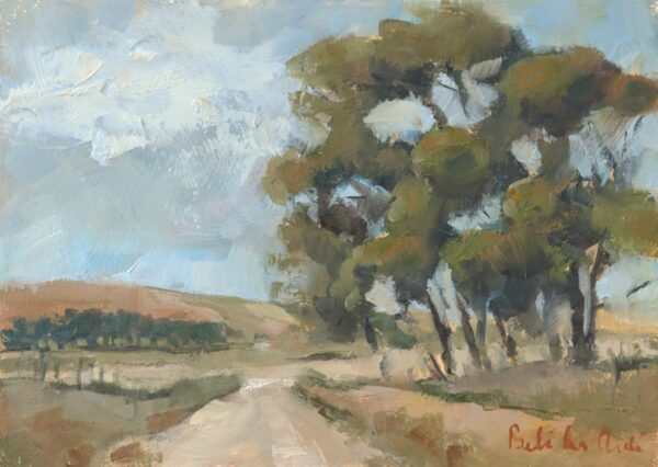 'Road to Napier, Overberg'