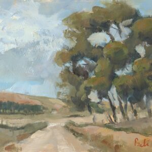 Road to Napier, Overberg